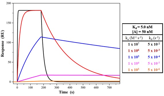 Figure 1. SPR sensorgrams of showing the changes in binding kinetics (ka, kd) profiles for different biomolecular interactions having the same affinity (Kd = 5.0 nM).using the same concentration of analyte (50 nM) and same affinity